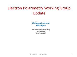 Electron Polarimetry Working Group Update