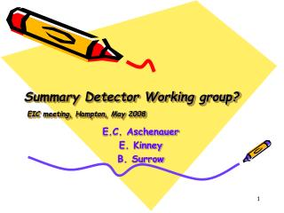 Summary Detector Working group?  EIC meeting, Hampton, May 2008