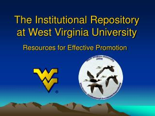 The Institutional Repository at West Virginia University