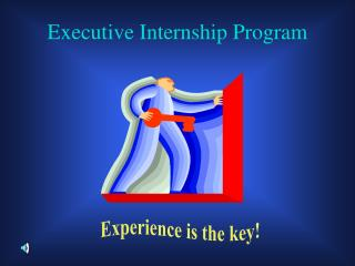 Executive Internship Program