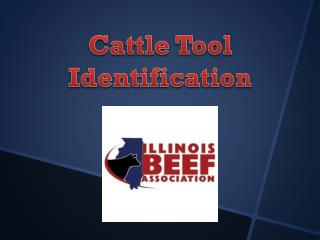 Cattle Tool Identification