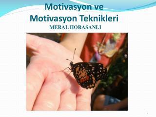 M otivasyon  ve Motivasyon Teknikleri   MERAL HORASANLI