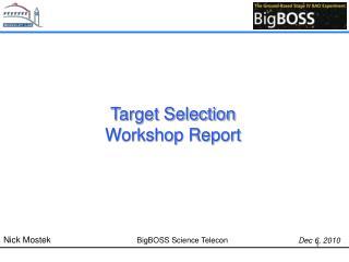 Target Selection Workshop Report