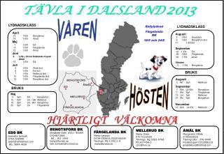 TÄVLA  I DALSLAND 2013