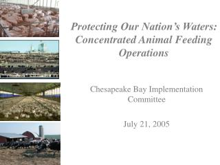Protecting Our Nation's Waters: Concentrated Animal Feeding Operations