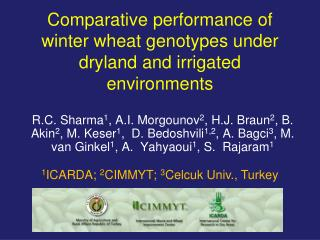 Comparative performance of winter wheat genotypes under dryland and irrigated environments
