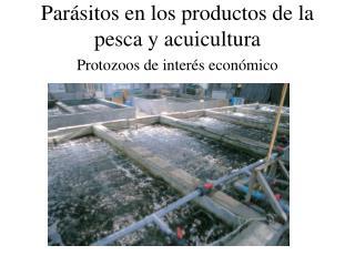 Par sitos en los productos de la pesca y acuicultura