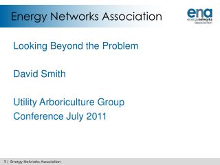 Energy Networks Association