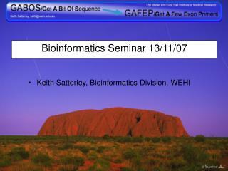 Bioinformatics Seminar 13/11/07
