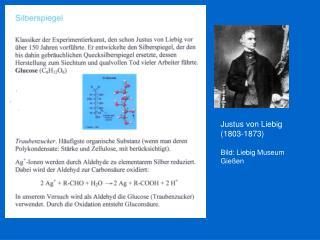 Justus von Liebig  (1803-1873) Bild: Liebig Museum Gießen