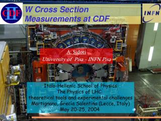 W Cross Section Measurements at CDF