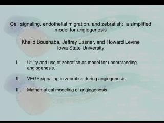 Utility and use of zebrafish as model for understanding angiogenesis.