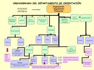 ORGANIGRAMA DEL DEPARTAMENTO DE ORIENTACIÓN