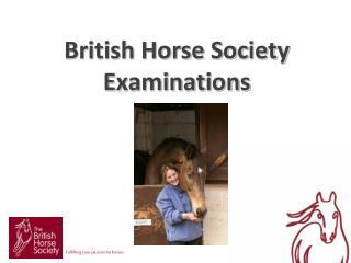 British Horse Society  Examinations