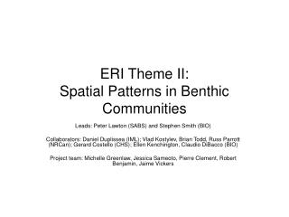 ERI Theme II:  Spatial Patterns in Benthic Communities