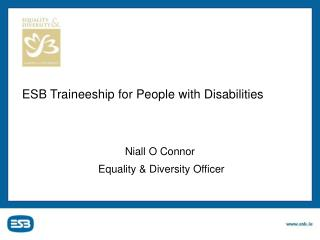 ESB Traineeship for People with Disabilities