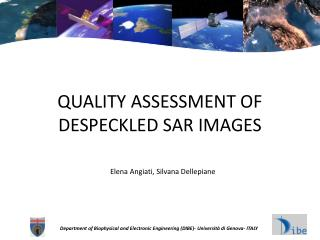 QUALITY ASSESSMENT OF DESPECKLED SAR IMAGES