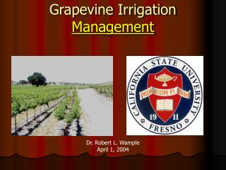 Grapevine Irrigation  Management