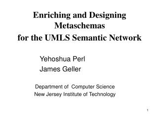Enriching and Designing Metaschemas  for the UMLS Semantic Network