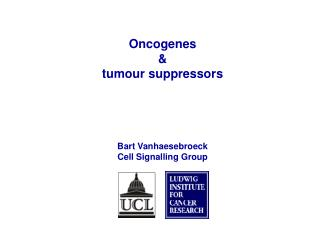 Oncogenes  &  tumour suppressors Bart Vanhaesebroeck Cell Signalling Group