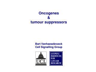 Oncogenes  &  tumour suppressors Bart Vanhaesebroeck Cell Signalling Group