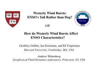 How do Westerly Wind Bursts Affect  ENSO Characteristics?