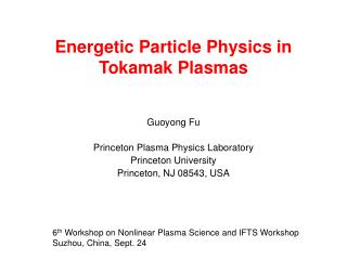 Energetic Particle Physics in Tokamak Plasmas