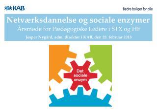 Netværksdannelse og sociale enzymer
