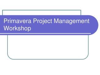 Primavera Project Management  Workshop
