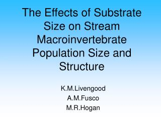 The Effects of Substrate Size on Stream Macroinvertebrate Population Size and Structure