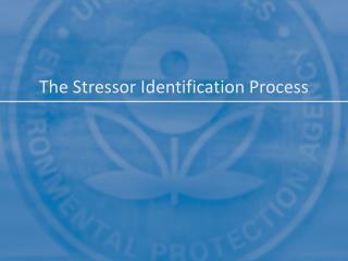 The Stressor Identification Process