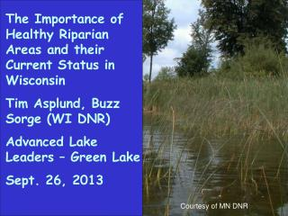 The Importance of Healthy Riparian Areas and their Current Status in Wisconsin
