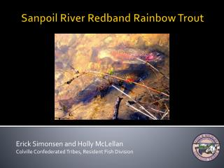 Sanpoil River Redband Rainbow Trout