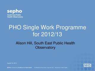 PHO Single Work Programme for 2012/13