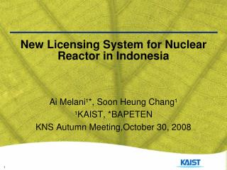 New Licensing System for Nuclear Reactor in Indonesia