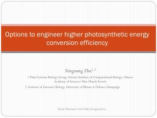 Options to engineer higher photosynthetic energy conversion efficiency