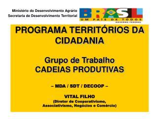 PROGRAMA TERRITÓRIOS DA CIDADANIA Grupo de Trabalho CADEIAS PRODUTIVAS – MDA / SDT / DECOOP –
