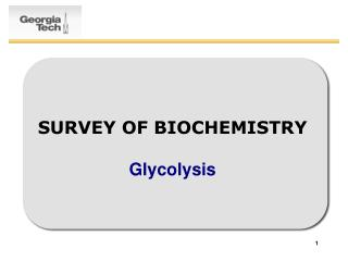 SURVEY OF BIOCHEMISTRY Glycolysis
