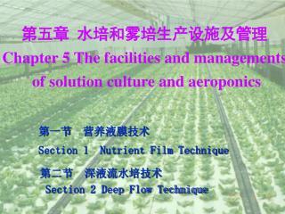 第五章  水培和雾培生产设施及管理 Chapter 5 The facilities and managements  of solution culture and aeroponics