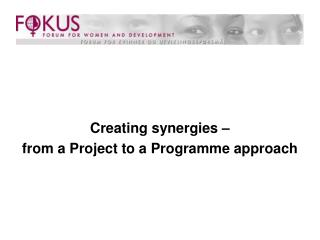 Creating synergies –  from a Project to a Programme approach