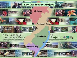 The Landscape Project