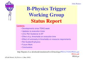 B-Physics Trigger Working Group  Status Report