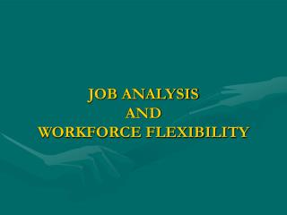 JOB ANALYSIS  AND  WORKFORCE FLEXIBILITY