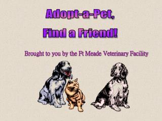 Adopt-a-Pet, Find a Friend!