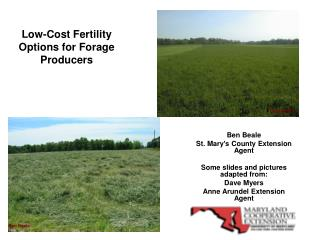 Low-Cost Fertility Options for Forage Producers
