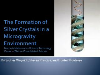 The Formation of Silver Crystals in a Microgravity Environment