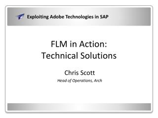 FLM in Action: Technical Solutions