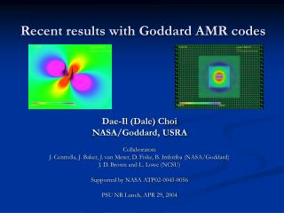 Recent results with Goddard AMR codes