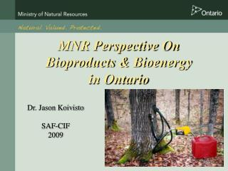 MNR Perspective On  Bioproducts & Bioenergy  in Ontario