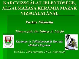 KARCVIZSGÁLAT JELENTŐSÉGE, ALKALMAZÁSA KERÁMIA MÁZAK VIZSGÁLATÁNÁL